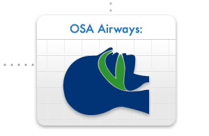 OSA Airways